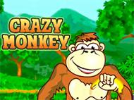 Игровой автомат Crazy Monkey онлайн на деньги