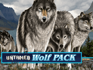 Игра в онлайн аппарат Волчья Стая