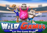 В казино без регистрации автомат Дикие Игры