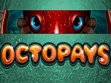 Автомат Сокровище Осьминога от Microgaming с гарантией победы